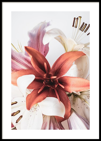 Lilies No2 Poster in the group Prints / Floral at Desenio AB (12107)