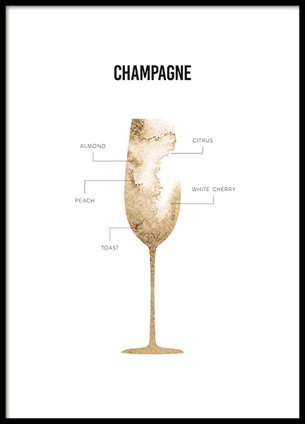 Champagne Anatomy Poster in the group Prints / Kitchen at Desenio AB (12118)