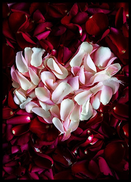 Rose Heart Poster in the group Prints / Floral at Desenio AB (12145)