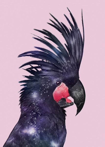 Galaxy Bird Poster in the group Prints / Animals / Birds at Desenio AB (12212)