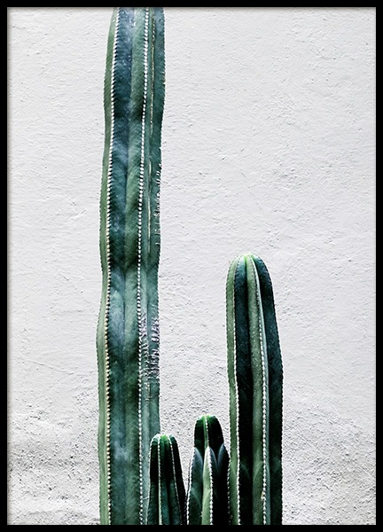 White Cactus Wall Poster in the group Prints / Floral at Desenio AB (12222)