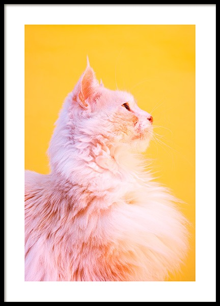 Pink Cat Poster in the group Prints / Animals at Desenio AB (12227)