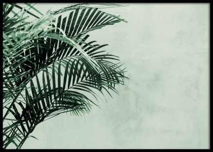 Palm Tree Wall Poster in the group Prints / Floral at Desenio AB (12412)
