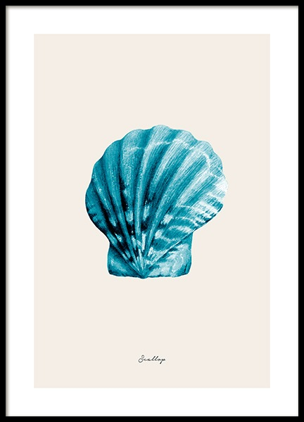 Blue Scallop Poster in the group Prints / Nature at Desenio AB (12427)