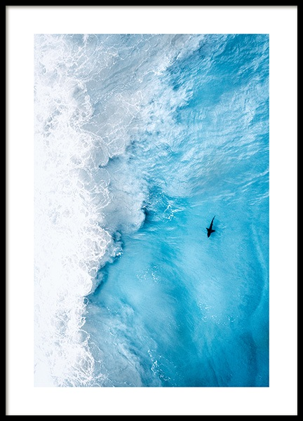 Shark Spotting Poster in the group Prints / Nature prints at Desenio AB (12457)