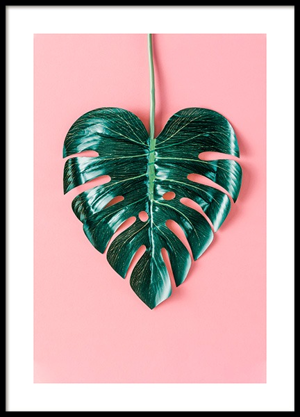 Heart-Shaped Monstera Poster in the group Prints / Floral at Desenio AB (12524)