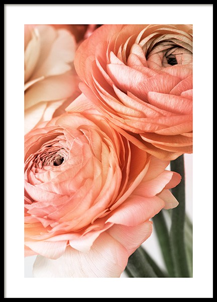 Delicate Flowers Poster in the group Prints / Photographs at Desenio AB (12590)