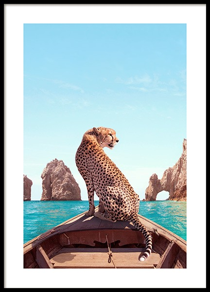Los Cabos Poster in the group Prints / Animals at Desenio AB (12738)