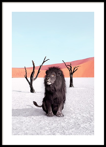 Namibia Poster in the group Prints / Photographs at Desenio AB (12740)