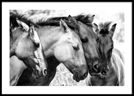 Four Horses Poster in the group Prints / Black & white at Desenio AB (13037)
