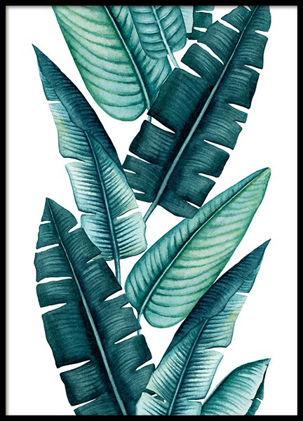 Tropical Art No2 Poster in the group Prints / Floral at Desenio AB (13067)