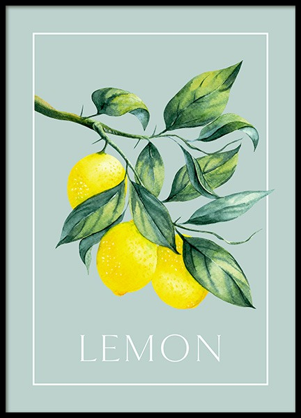 Vintage Lemons Poster in the group Prints / Kitchen at Desenio AB (13102)