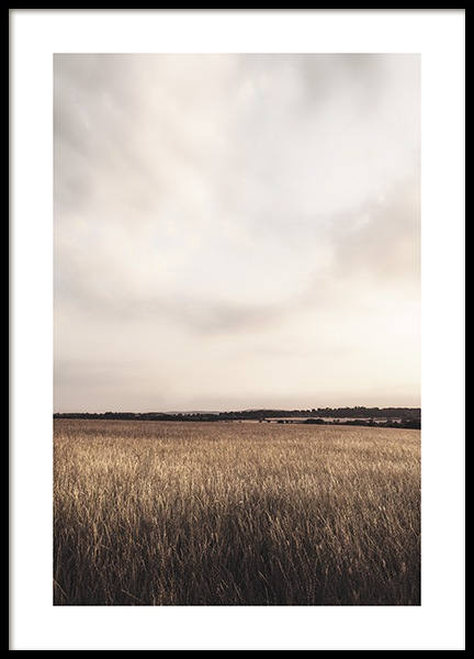 Calm Field Poster in the group Prints / Nature at Desenio AB (13201)