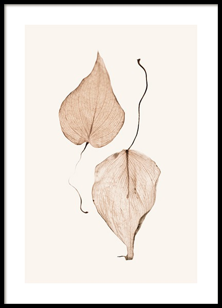 Two Dried Leaves Poster in the group Prints / Photographs at Desenio AB (13203)