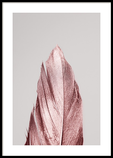 Pink Feather Poster in the group Prints / Photographs at Desenio AB (13220)