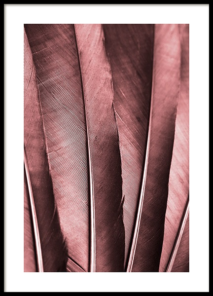 Burgundy Feathers Poster in the group Prints / Photographs at Desenio AB (13221)