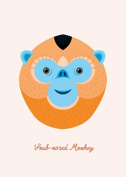 Snub-nosed Monkey Poster in the group Prints / Kids at Desenio AB (13322)