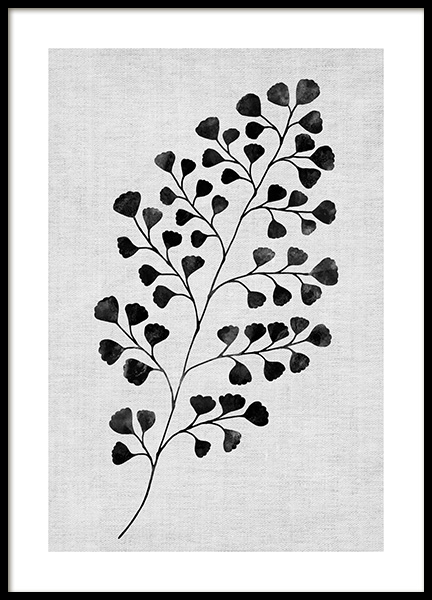 Monochrome Fern No1 Poster