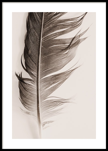 Feather Beige Poster in the group Prints / Nature at Desenio AB (13646)