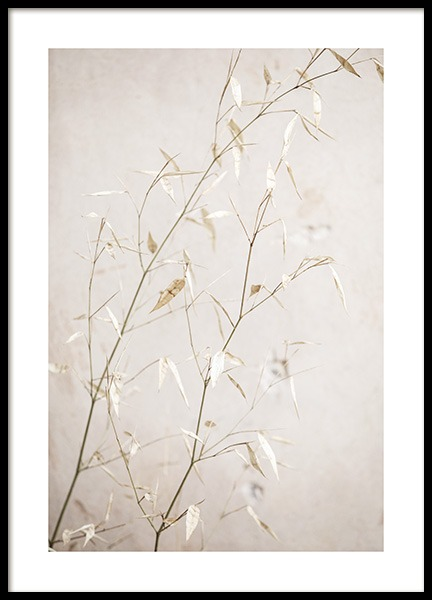 Beige Straws Poster in the group Prints / Botanical / Green plants at Desenio AB (14208)