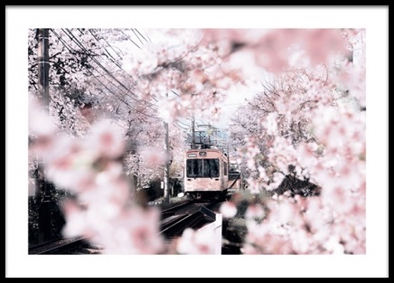 Blossom in Kyoto Poster in the group Prints / Botanical / Flowers at Desenio AB (14411)
