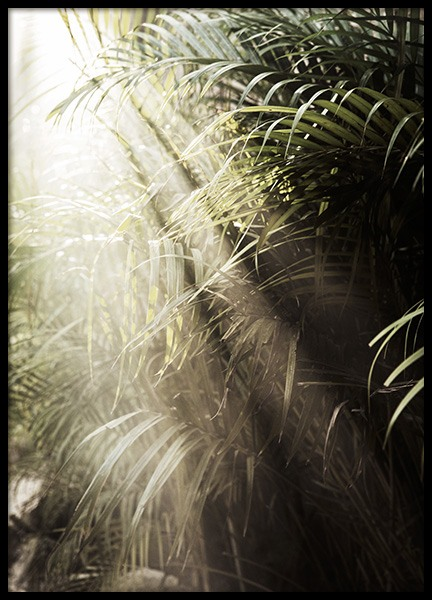 Hazy Palm Trees Poster
