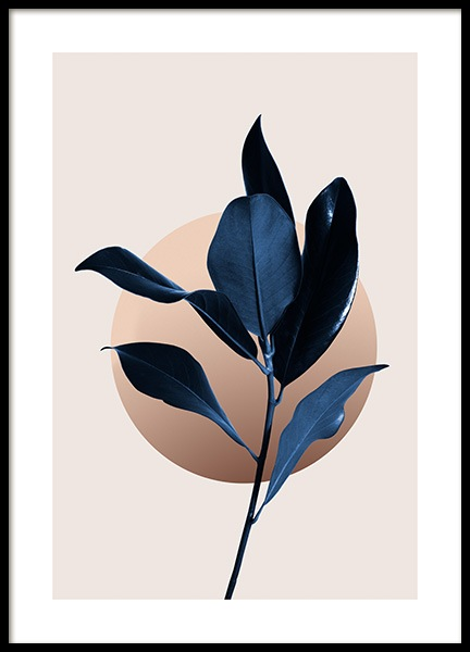 Blue Magnolia No2 Poster in the group Prints / Botanical / Green plants at Desenio AB (14560)