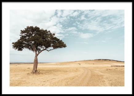 Lonely Acacia Tree Poster in the group Prints / Nature prints / Landscapes at Desenio AB (14579)