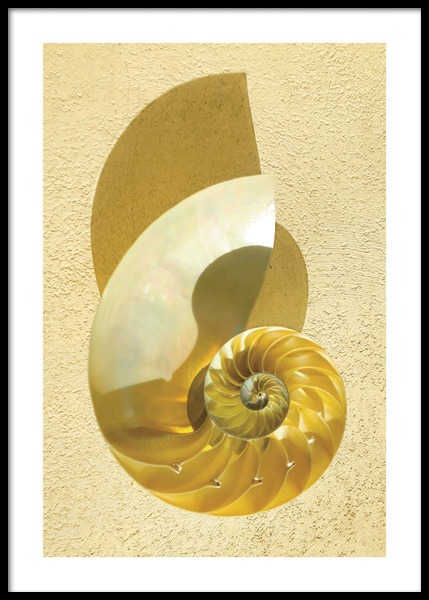 Yellow Seashell Poster in the group Prints / Photographs at Desenio AB (14654)