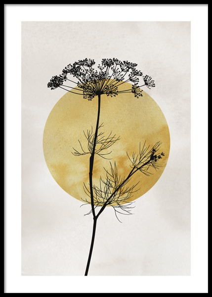 Anthriscus Silhouette Poster in the group Prints / Art prints at Desenio AB (14663)