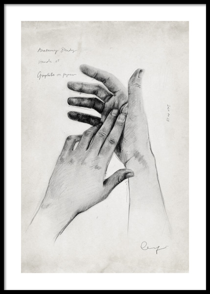 Anatomy Study Hands No1 Poster in the group Prints / Art prints at Desenio AB (14689)