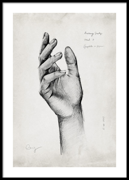 Anatomy Study Hands No2 Poster in the group Prints / Art prints at Desenio AB (14690)