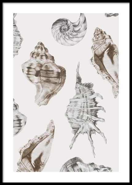 Shell Pattern Poster in the group Prints / Art prints at Desenio AB (14707)