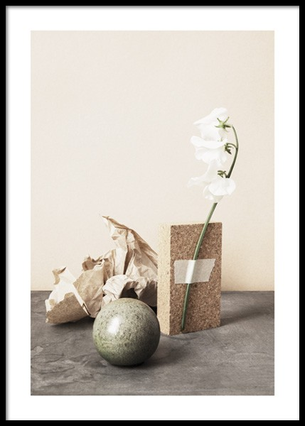 Still White Flower Poster in the group Prints / Botanical / Flowers at Desenio AB (14714)