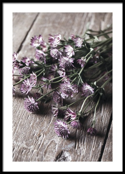 Pick Me Flowers Poster in the group Prints / Photographs at Desenio AB (15019)