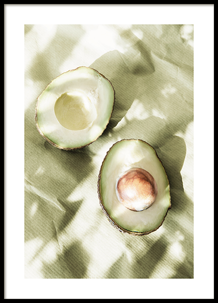 Sunlit Avocados Poster