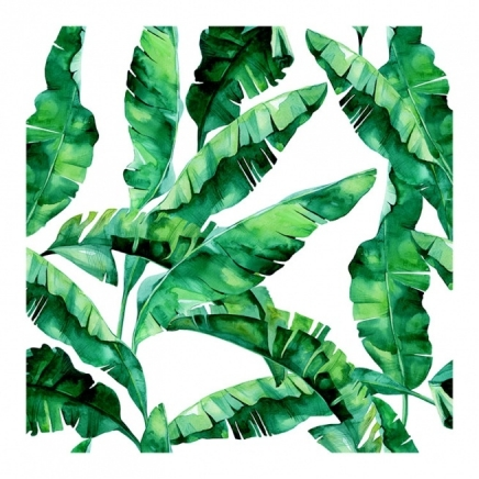 Tropical Banana Leaves Poster in the group Prints / Sizes / 50x50cm | 20x20 at Desenio AB (2042)