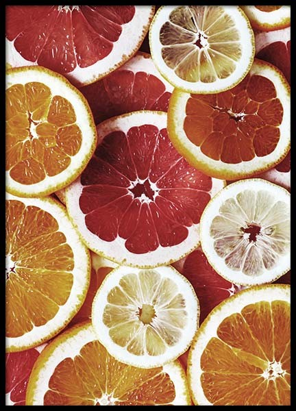 Citrus Fruits Poster in the group Prints / Kitchen at Desenio AB (2124)