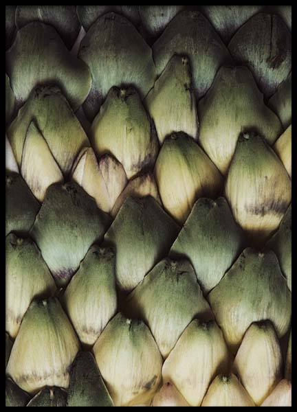 Artichoke Scales Poster in the group Prints / Kitchen at Desenio AB (2127)