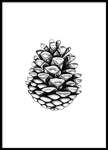 Pinecone Poster in the group Prints / Black & white at Desenio AB (2274)