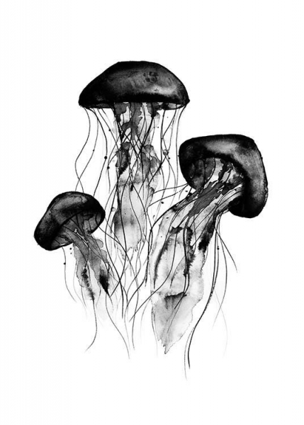 Jellyfish Poster in the group Prints / Black & white at Desenio AB (2275)