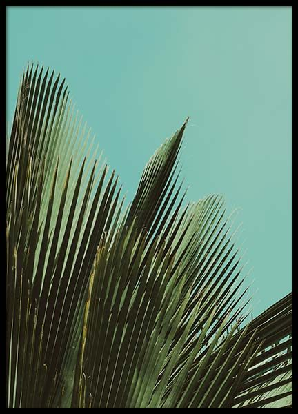 Palms On Blue Poster in the group Prints / Floral at Desenio AB (2283)