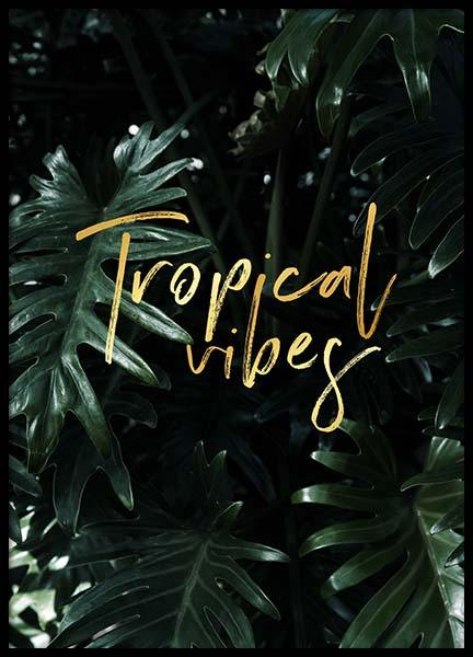 Tropical Poster in the group Prints / Sizes / 30x40cm | 12x16 at Desenio AB (2402)