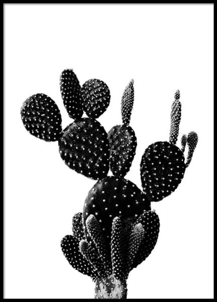 Black Cactus One Poster in the group Prints / Black & white at Desenio AB (2429)