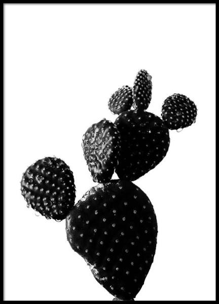 Black cactus two Poster in the group Prints / Sizes / 50x70cm | 20x28 at Desenio AB (2430)