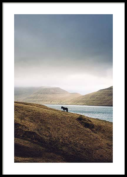 Iceland Horse Poster in the group Prints / Nature at Desenio AB (2703)