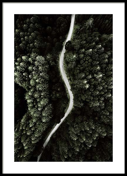 Forest above Poster in the group Prints / Sizes / 50x70cm | 20x28 at Desenio AB (2713)