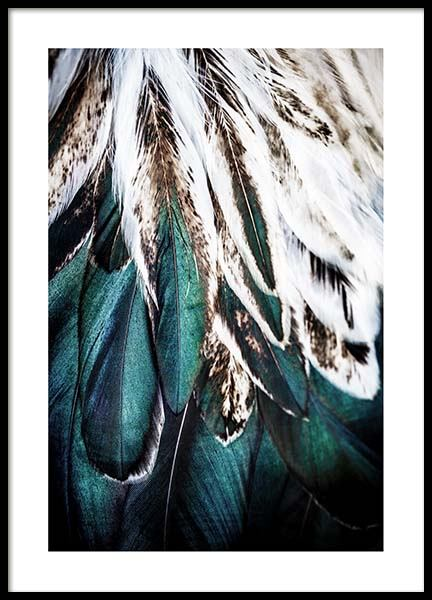 Green Feathers Poster in the group Prints / Sizes / 50x70cm | 20x28 at Desenio AB (2732)
