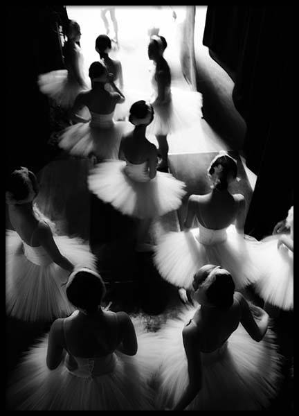 Swan Lake Poster in the group Prints / Black & white at Desenio AB (2755)