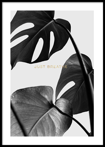 Remember To Breathe Poster in the group Prints / Botanical at Desenio AB (2784)